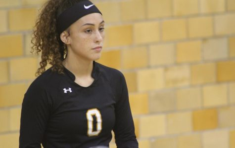 2018 Black and Gold Volleyball Scrimage